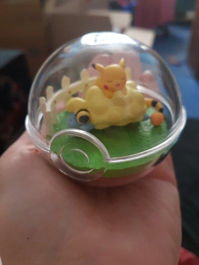 Pokéball mit einem schlafenden Voltilamm und Pikachu x3